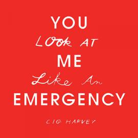 Interview with Cig Harvey: YOU Look At ME Like An EMERGENCY