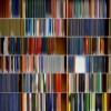 Danae Falliers: Library