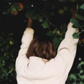 Content-Aware: Livia Marinescu