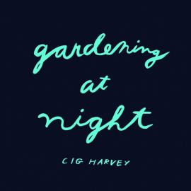 Cig Harvey: Gardening at Night