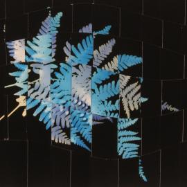 Mary Pinto: Weavings, Cut Outs, After Sandy, and Home and Garden