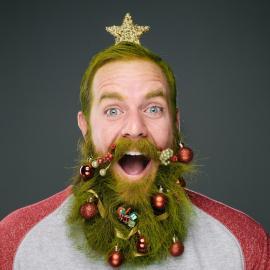 Stephanie Jarstad : The Twelve Beards of Christmas