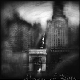 Susan Burnstine: Absence of Being