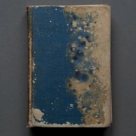 Mary Ellen Bartley: Reading Grey Gardens