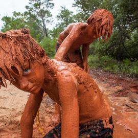 DB Waltrip: Of Mud and Men