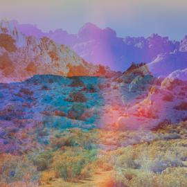 Terri Loewenthal: Psychscapes