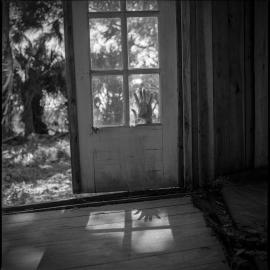 Evy Huppert: Wild Spirits