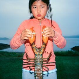 Susan Lapides: Crustaceans