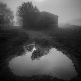 Elizabeth Greenberg: Imaginary Places