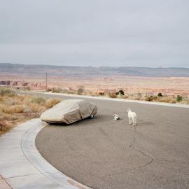 Joshua Dudley Greer: Somewhere Along the Line