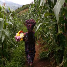 International Peace Week: Rodrigo Abd: Civil War Exhumations