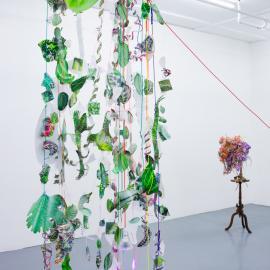Focus on Installation: Aimée Beaubien
