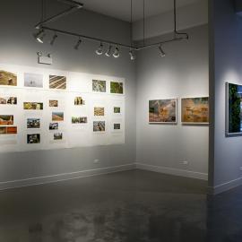 Focus on Gallerists: Catherine Edelman of Catherine Edelman Gallery