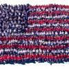 2012 LENSCRATCH Americana Exhibition