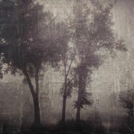 Clare O'Neill: Contemporary Photo Encaustics