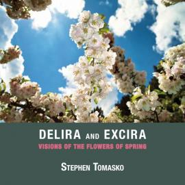 Stephen Tomasko: Delira and Excira