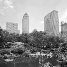 Lauren Henkin: The Park