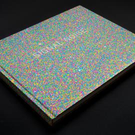 Aaron Rothman: Signal Noise