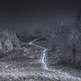 Meg Roussos: New Vistas: Photographers working with the Landscape
