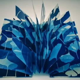 Winter Blues: Contemporary Cyanotypes at the Center for Photographic Art