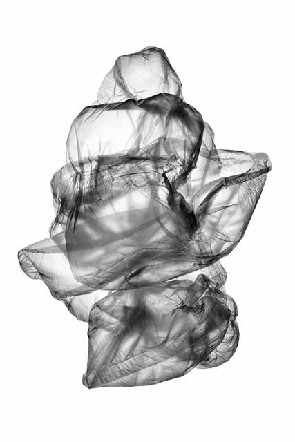 Photolucida: Zelda Zinn: Invisible Air and Transformer