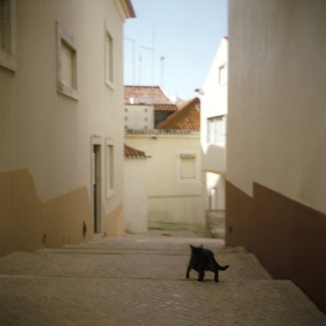 04 - Nazare, Portugal 2008