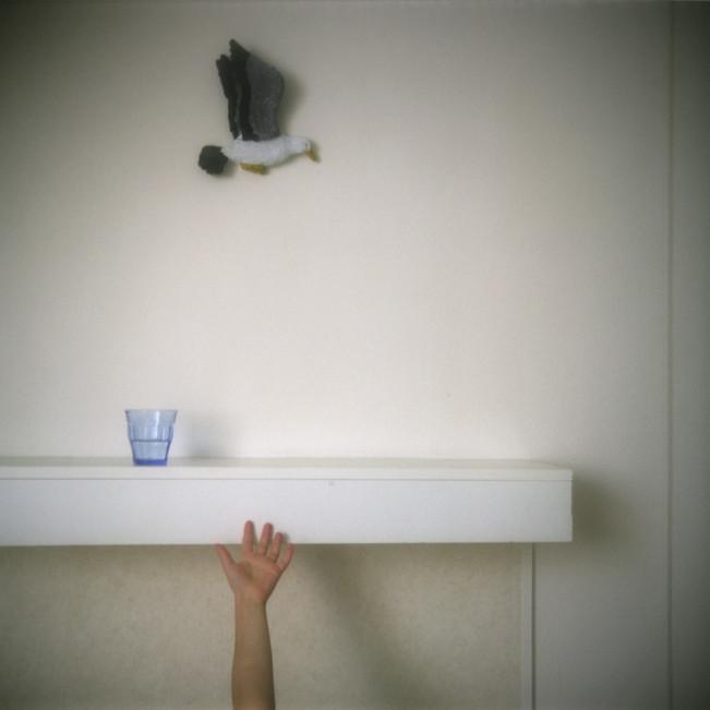 05 - Schiermonnikoog, Pays Bas 2010