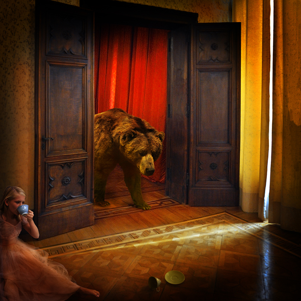 By Chambers: Tom Chambers: Animal Visions