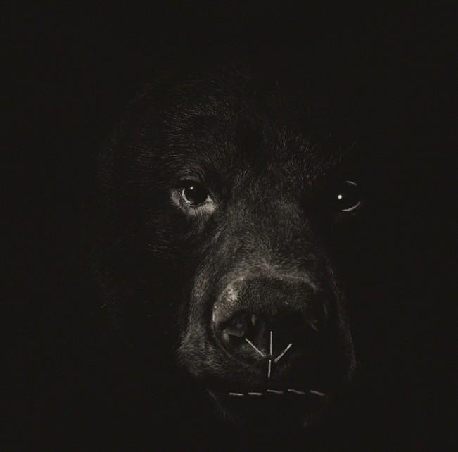 Menace 3 (Bear)