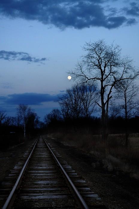 moonlight, fallon, cheryl