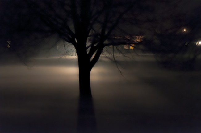 night fog