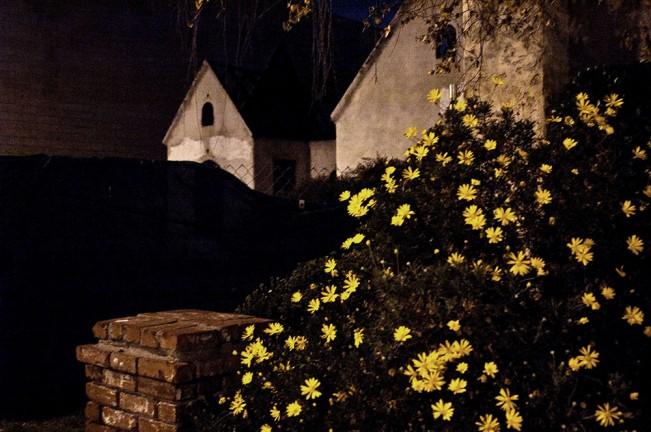 rosales_night_01