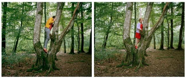 12_treeclimbing
