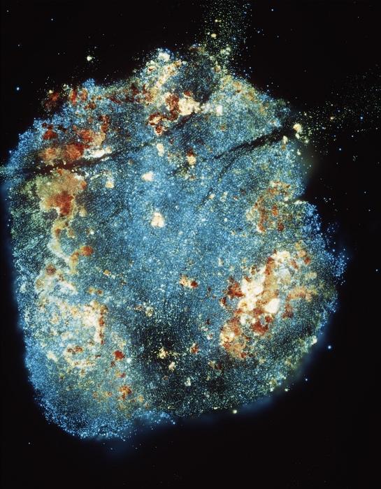 Cosmos_P_02 001