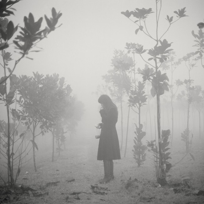 The woman in the fog, 2008
