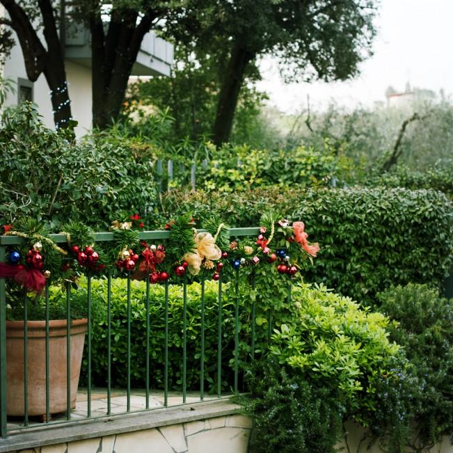 christmas in parents' garden_Patrizia Fusi