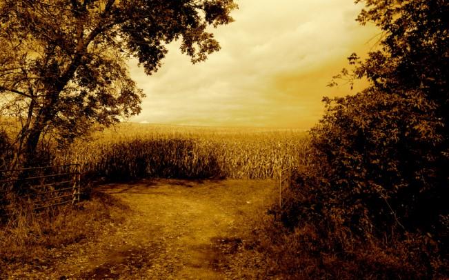 pasture gate(sepia)