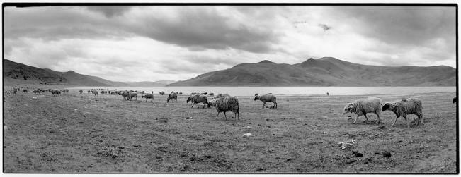 08_Tibet