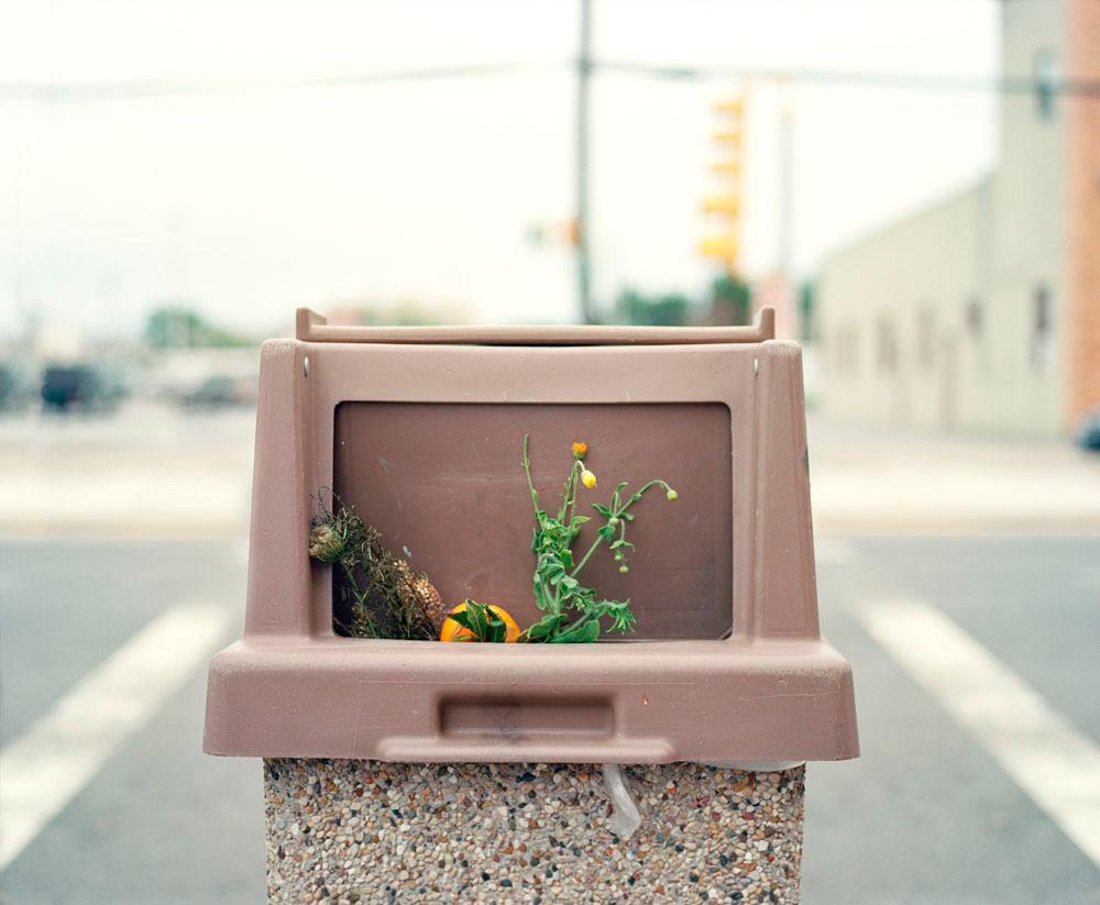 Dana Stirling: Cache Memory