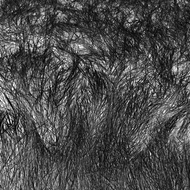 Elizabeth Stone Grass Tracks 4