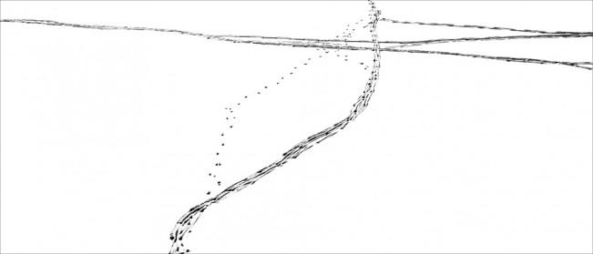 Elizabeth Stone Snow Tracks 1