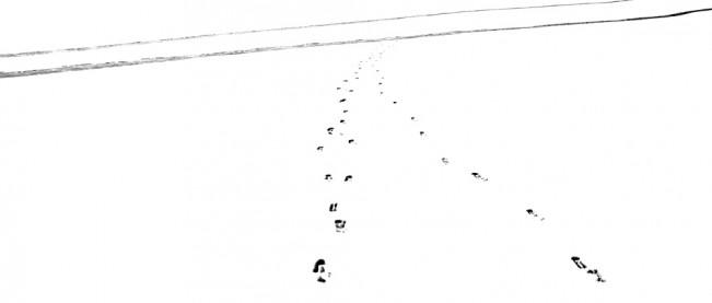 Elizabeth Stone Snow Tracks 7
