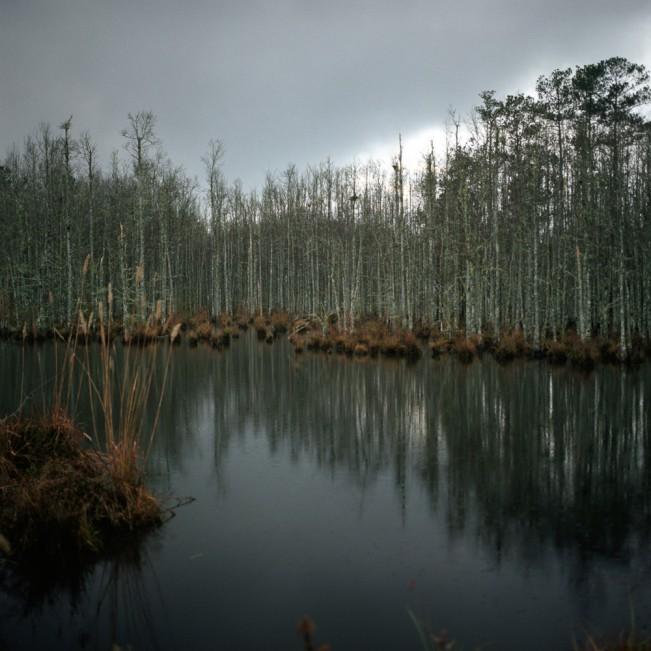 wpickering - 14 - Rain