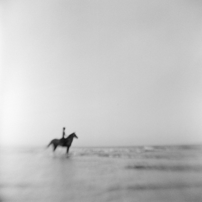 Rohan_Jim_You Can Lead a Horse to Water