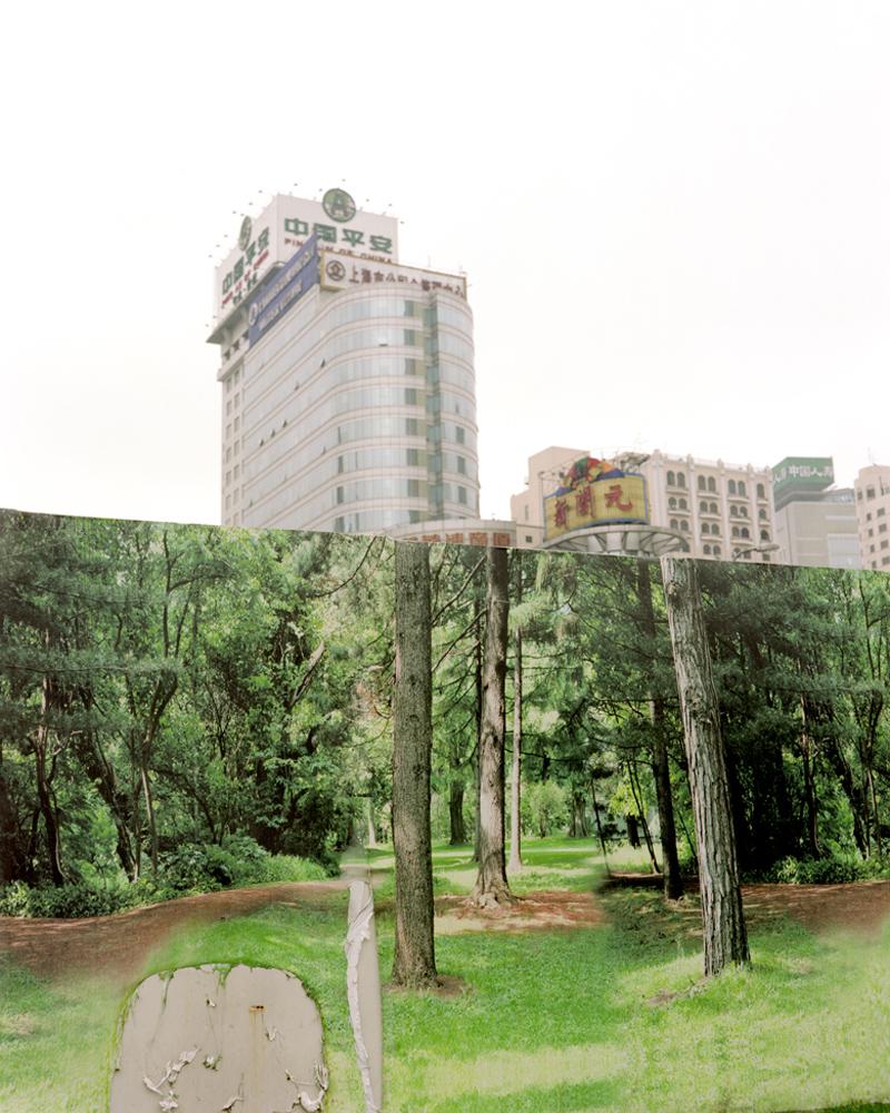 WassinkLundgren-Shanghai Forest_01