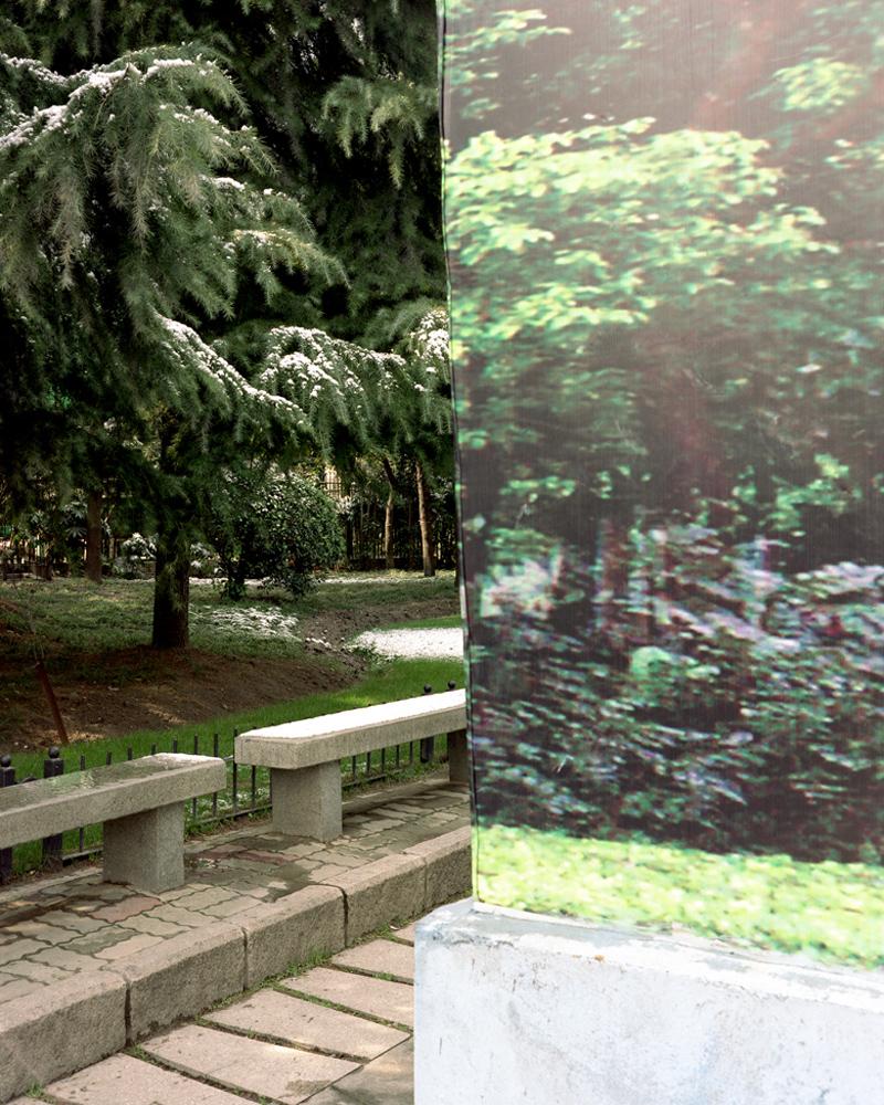 WassinkLundgren-Shanghai Forest_02