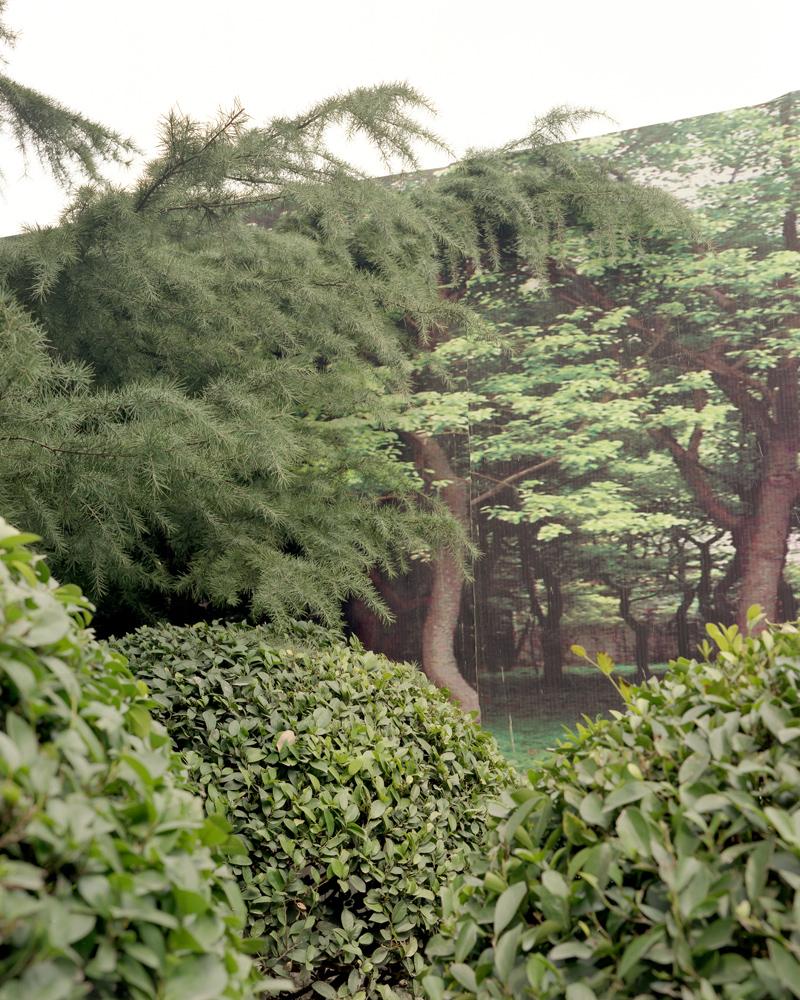 WassinkLundgren-Shanghai Forest_03