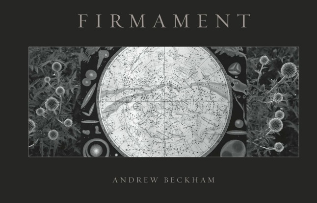 Firmament book cover