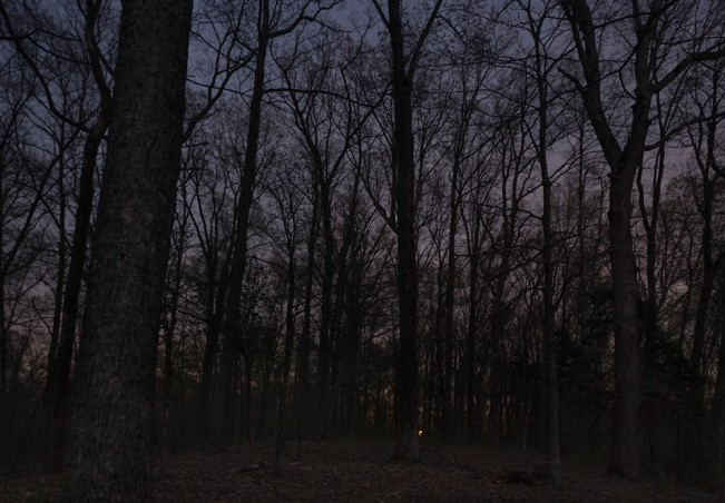 @Jeanine Michna-Bales, On the Way to Rest