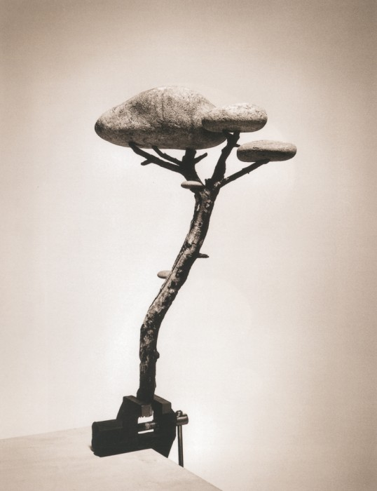 Madoz_Untitled_Madrid(PiedraBonsai)_2000